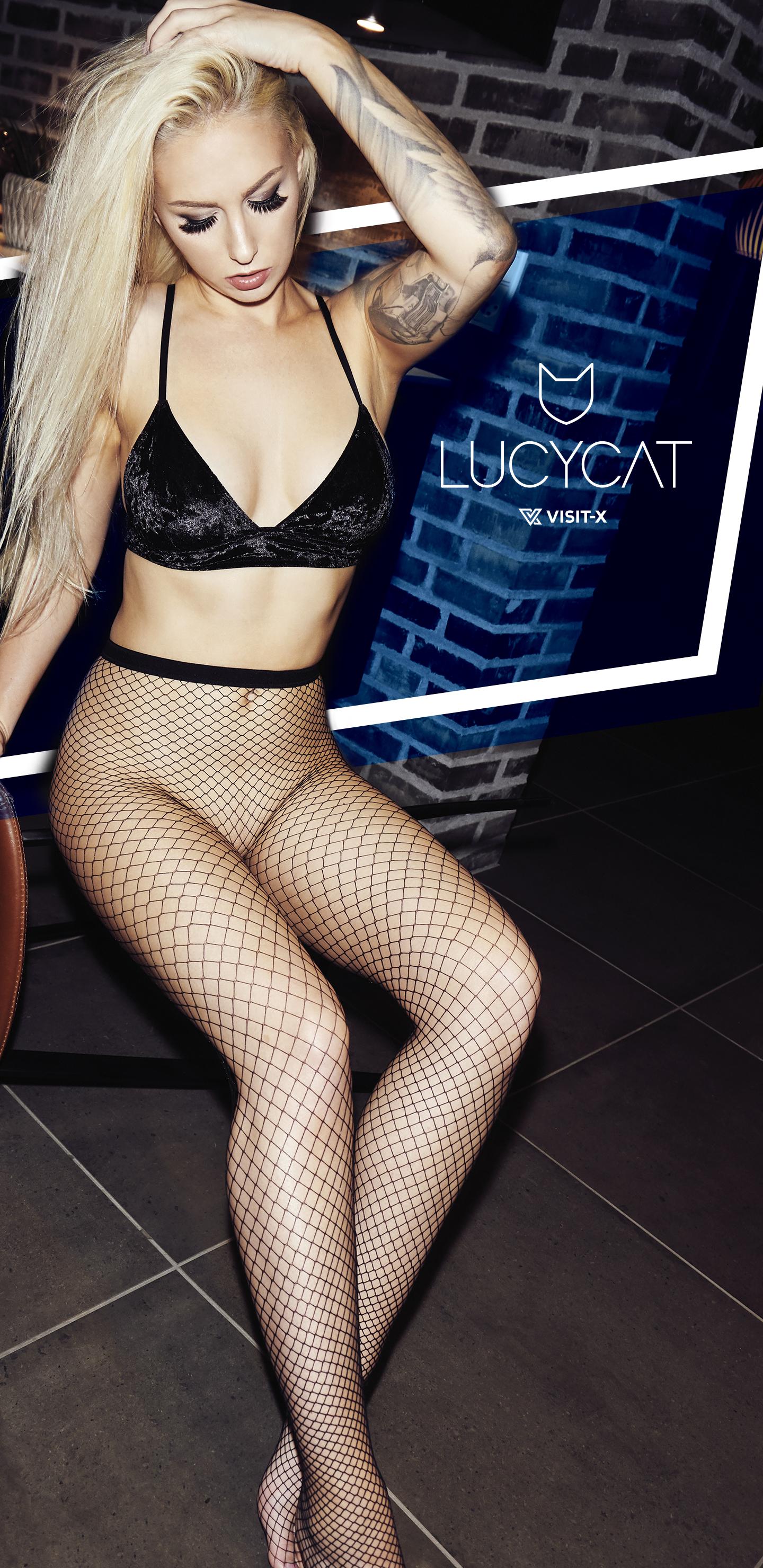 Lucy Cat. Com