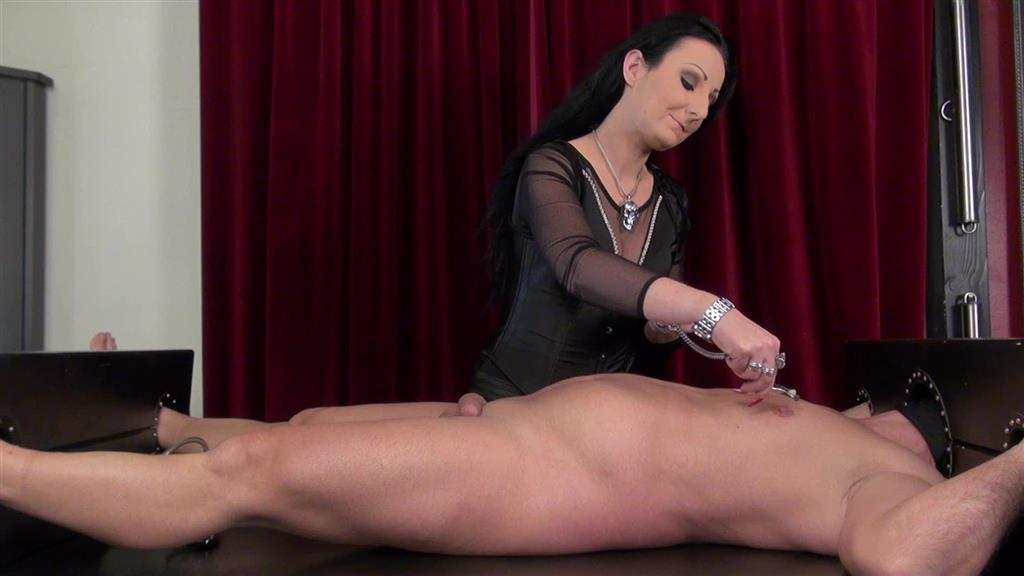 CBT Fun With Sounds and milking