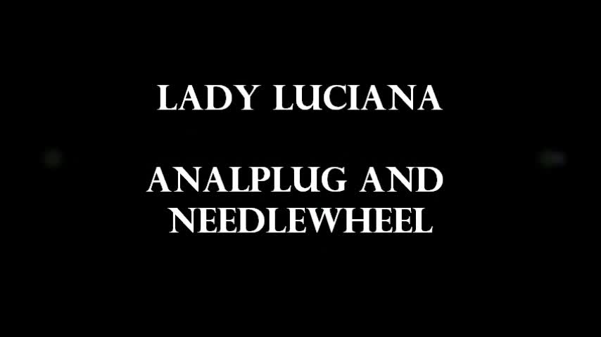 The Analplug